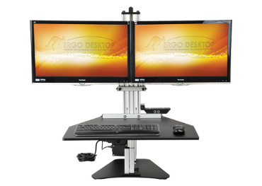 Kangaroo Electric Elite Standing_Front_Monitor_a